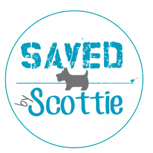 Saved By Scottie