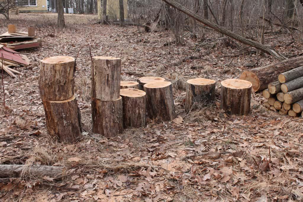 sxs fire pit logs