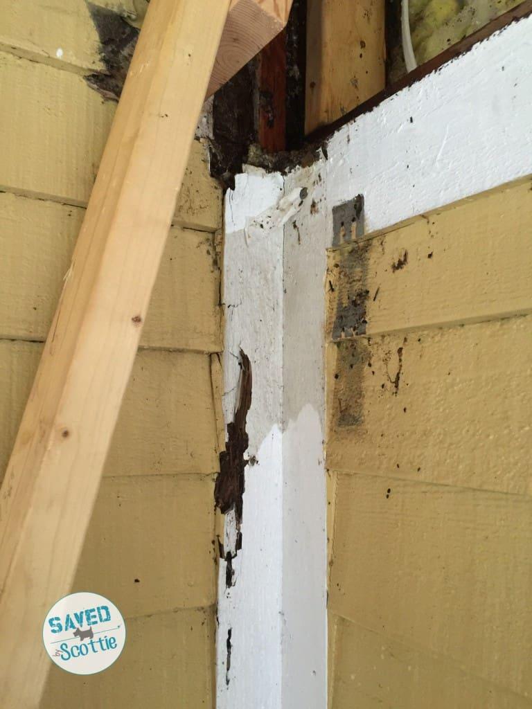 sxs deck water damage2