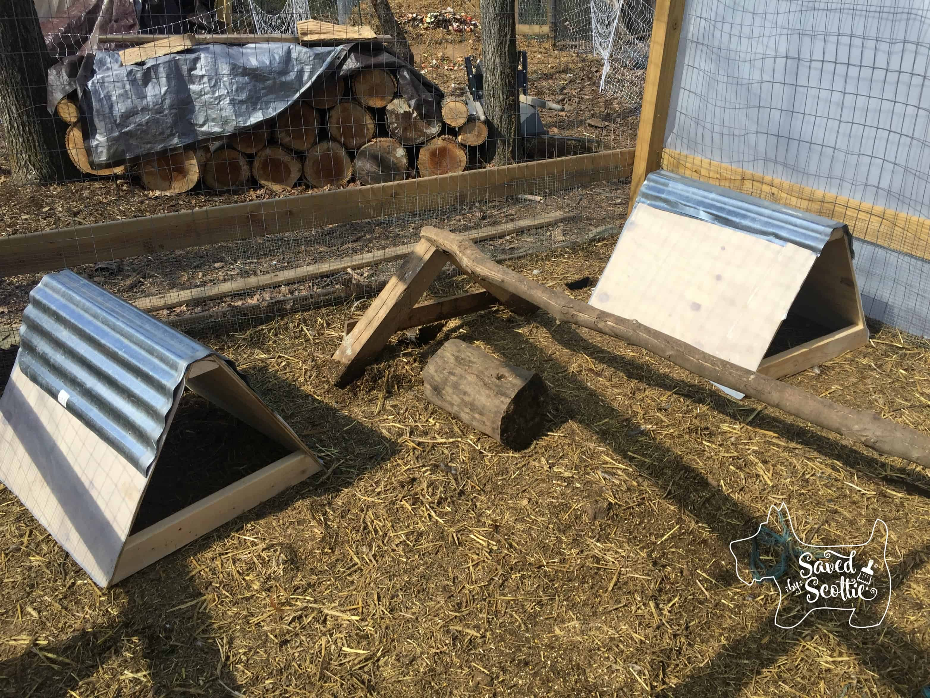 Saved by Scottie nesting boxes in place