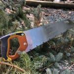 box saw laying in pine tree greenery.