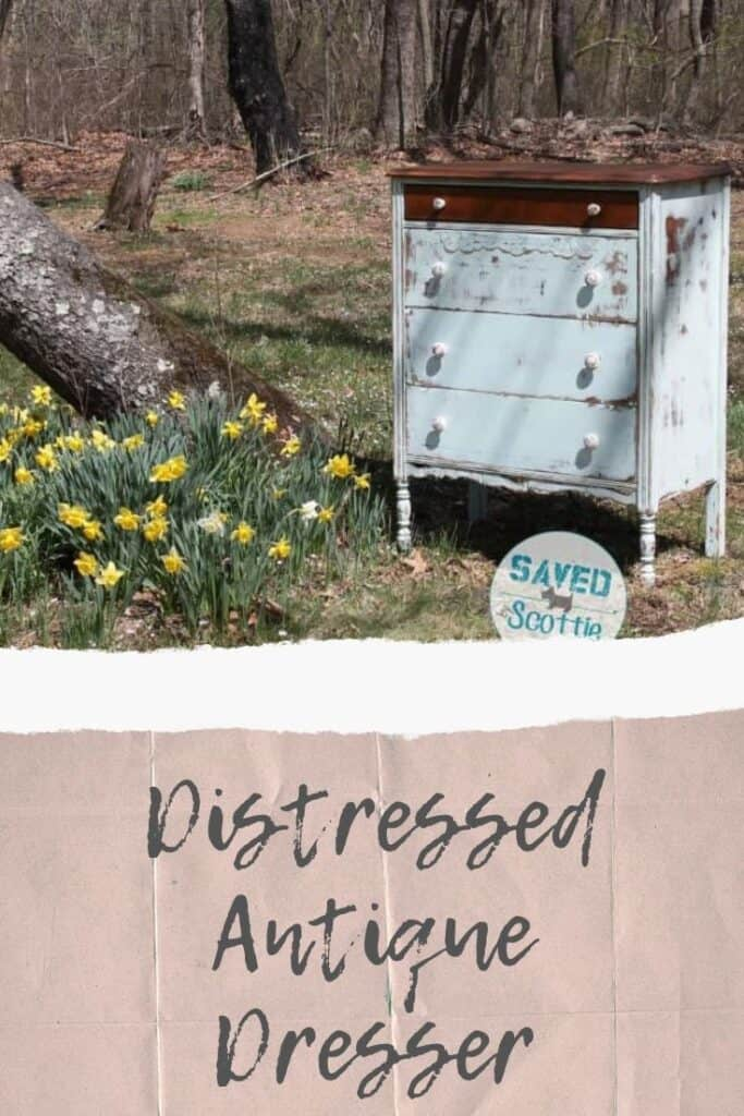 pinnable image of dresser in field of daffodils