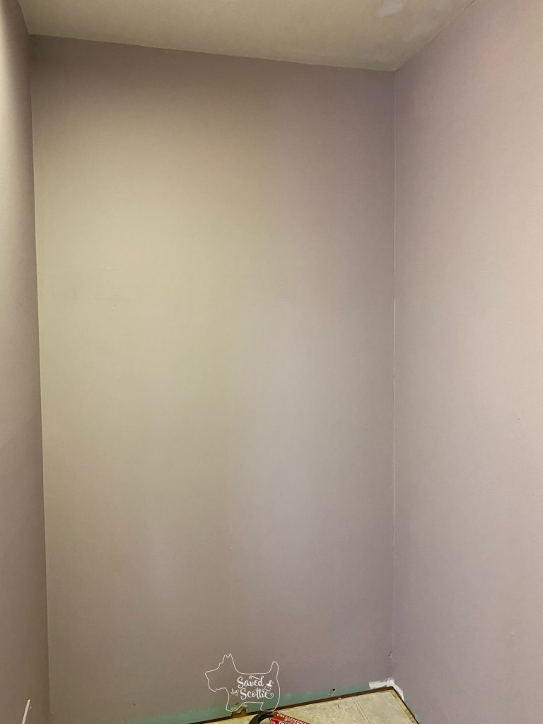 left wall of closet makeover after painting